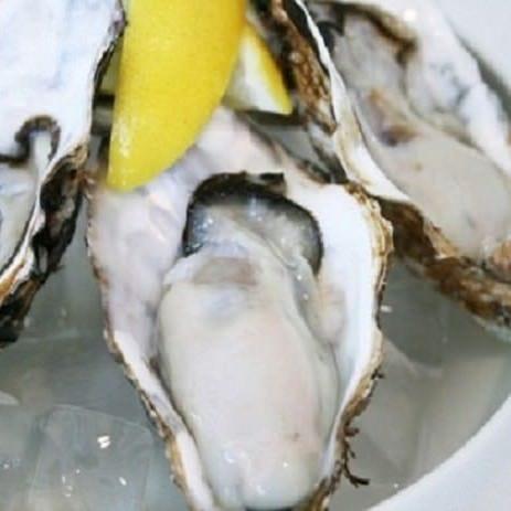 年中日本全国の新鮮な生牡蠣をご提供