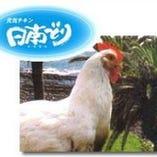 宮崎県日南鶏【宮崎県】