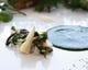 ウド、行者にんにく、こごみ、筍の入った山菜のリゾット