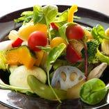 千葉野菜の農園サラダ