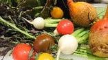 石井農園さんの野菜【千葉県】