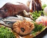 【魚屋直営】 絶品魚貝を職人の技で最高のカタチで御提供。