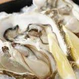 北海道産カキの産地食べ比べ 厚岸 & ひがわり仕入れ