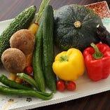 農薬不使用栽培にこだわった野菜をご提供!