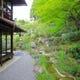 翡翠の如き、澄んだ緑に包まれる 庭園「石翠」