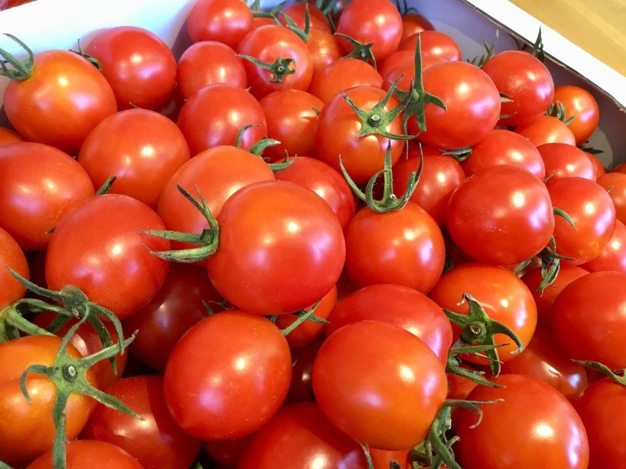 NEW☆【自家農園野菜のサラダランチ】農園サラダに焼野菜&ドリンクフリー