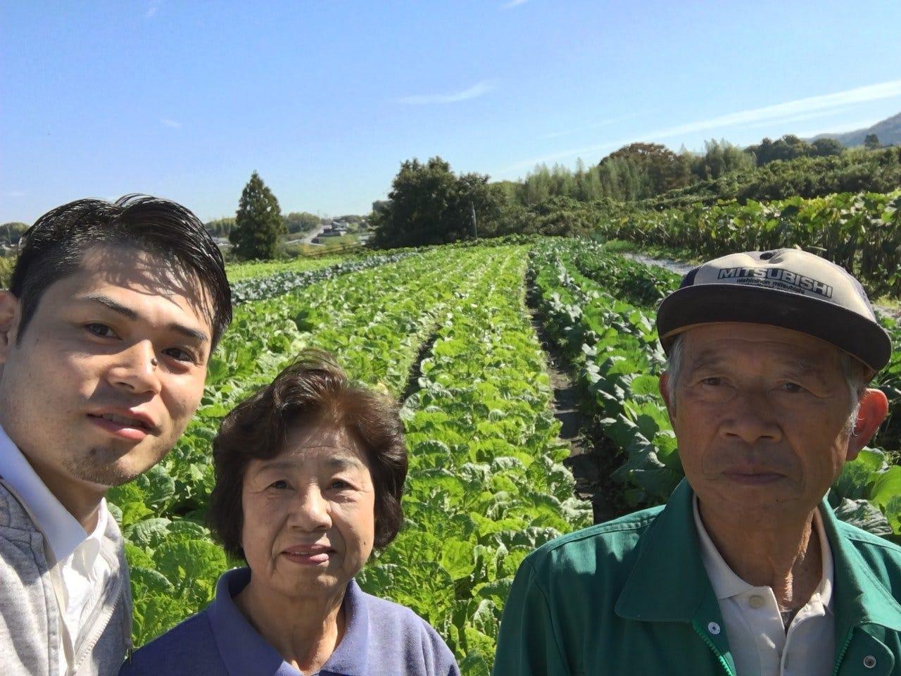 【自家栽培】農薬不使用の野菜が豊富