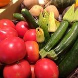 自家農園で作った旬野菜が楽しめる人気のコースです。