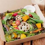【サラダBOX】シンプル自家農園サラダ&旬の焼野菜