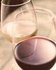 [赤・白]ハウスワイン