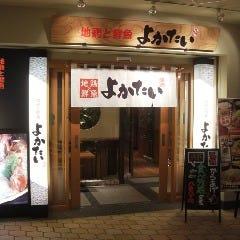地鶏と鮮魚 よかたい 九州