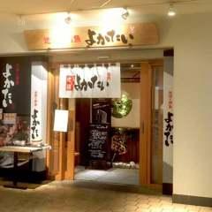 地鶏と鮮魚 よかたい 九州 晴海トリトン店