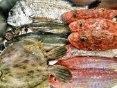 本日入荷の鮮魚