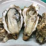 活殻かき 厚岸産で身が引き締まり濃厚な味わいです。
