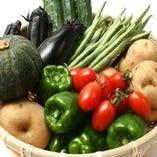安心・安全『国産野菜』【愛知県豊川市 など】