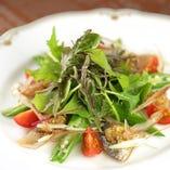 炙り鯵と旬野菜のサラダ仕立て