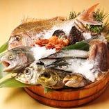 瀬戸内海で獲れた新鮮素材を捌きます