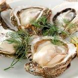 ◆産地直送の牡蠣◆ 秋田県・男鹿産、岩手県・大槌産など