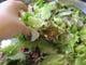 新鮮なみずみずしい野菜!!