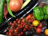 茨城の久松農園からの健康で美味しい野菜。旨みが濃くて力強い!