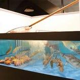 日本全国の新鮮な魚介類は、漁港から直送【日本全国】