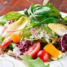 十種野菜の彩りサラダ
