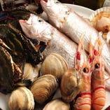 新鮮な魚介【三河湾近郊】