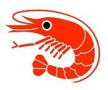 ◆魚介類各種◆