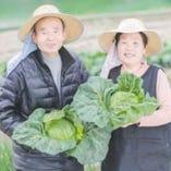 太陽の恵みと愛情で育った野菜【岡山県】