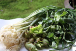 四季のある日本だからこそ、季節ごとの旬な食材を
