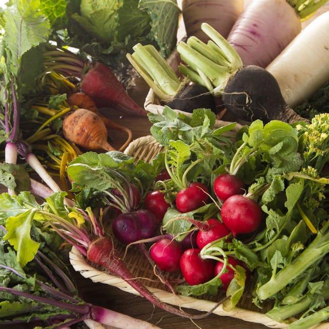 産地直送の食材を使ったランチは、食べ応えがあるボリューム