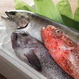 地域産直食材/魚介類