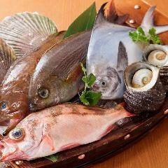 新鮮魚介と旬野菜和食 権之介 梅田