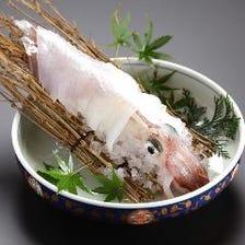 新鮮魚介取り扱っております。
