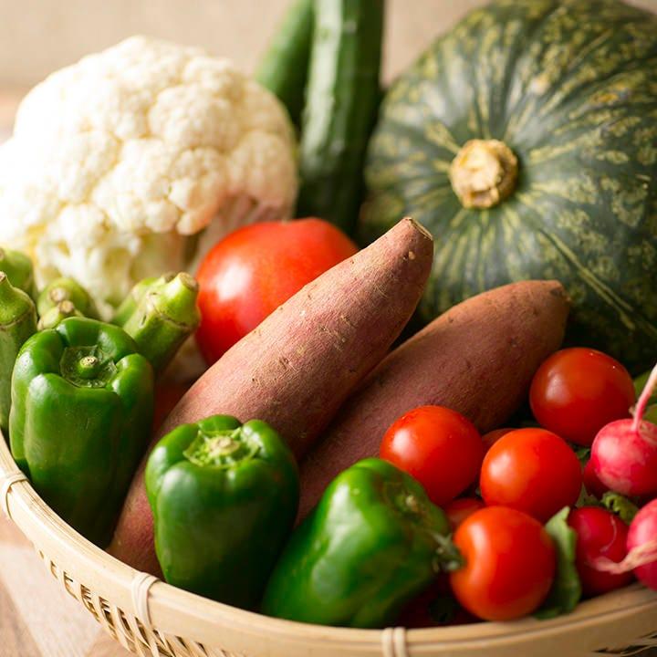 自家農園の採れたて野菜を中心に、みずみずしい野菜が揃います