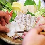 北海道産&相模湾の季節の魚を堪能