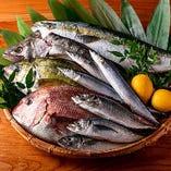 【刺身】 三崎港より直送される新鮮なお刺身をお楽しみください