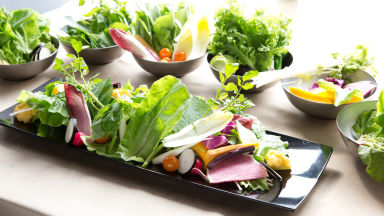 サムギョプサルと野菜 いふう 丸の内店 コースの画像