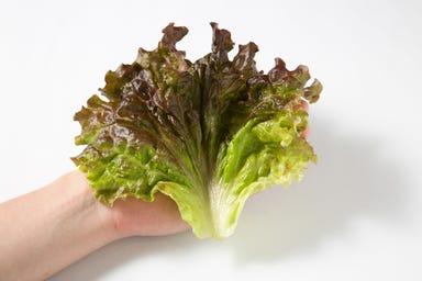 サムギョプサルと野菜 いふう 丸の内店 メニューの画像