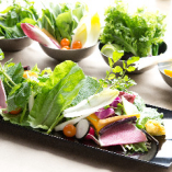 18種類の新鮮野菜たち・・・ インスタ映え間違いなし!