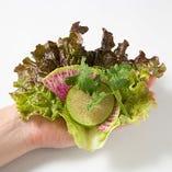 ②さらにお野菜を2種類程のせます。ハーブ類はアクセント程度がオススメ!