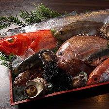 季節の鮮魚を炭火焼きと刺身でご堪能