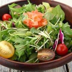 10種類の新鮮野菜を使ったグリーンサラダ