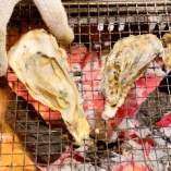 【牡蠣の食べ放題】焼き立ての牡蠣を堪能♪生牡蠣など食べ方色々とお楽しみいただけます!