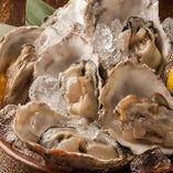 100円で牡蠣が食べれる北海道海鮮大衆酒場!!!