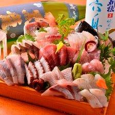 三浦半島地魚どっさり盛