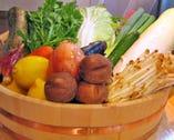 地場産のみずみずしい季節の野菜をご提供!