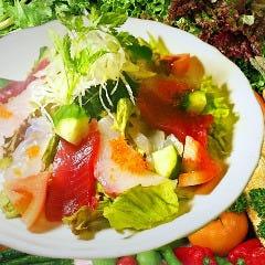 魚屋十番の海鮮サラダ