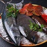 蟹味噌の甲羅焼きや帆立のバター醬油焼きなど 人気の漁師めしをこの時期だけの特別価格でご奉仕!