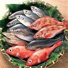 魚市場直送の海のもん